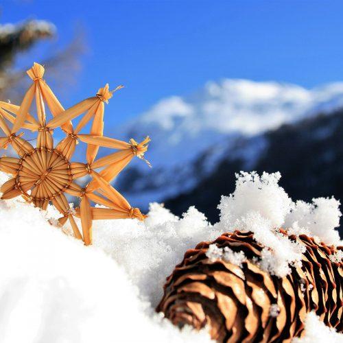 Viajes a la nieve sin tocar los esquís