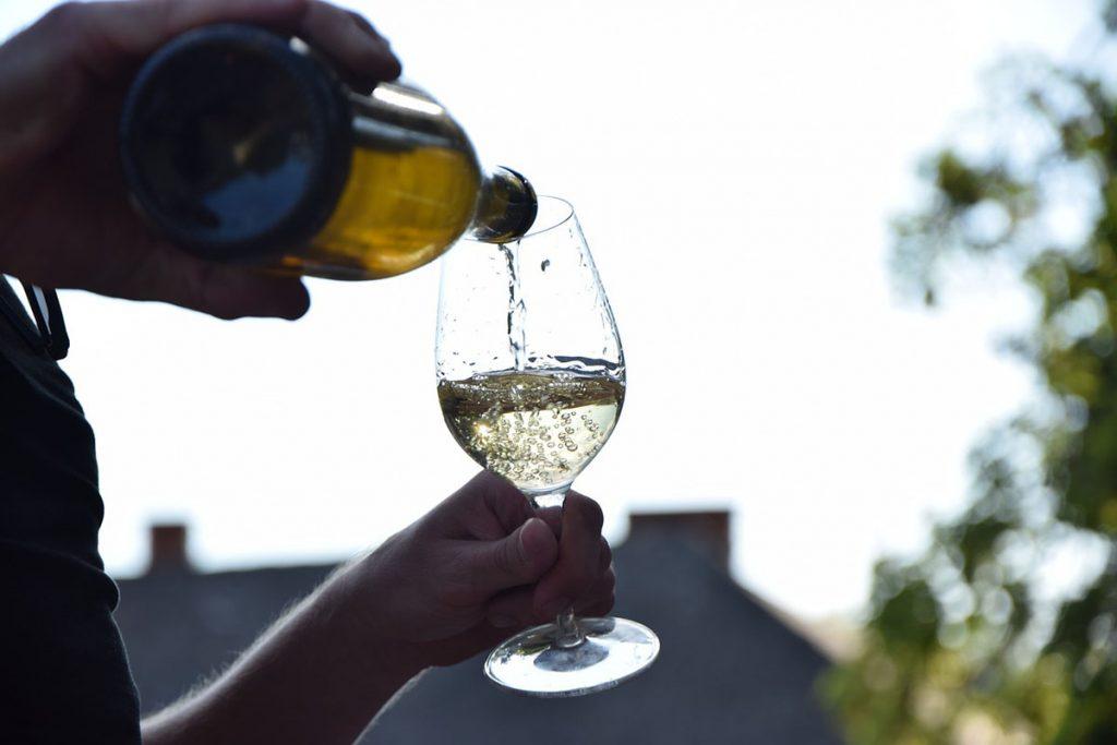 Qué visitar en Galicia: viñedos de Albariño